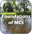 foundations of mcs